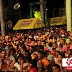 Carnaval Vegano 2014 (116)